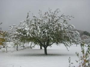 Winter am Rande der Alb von Christian M.Grube