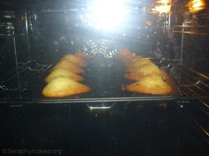 Madeleines, gequält in der Hitze des Ofens ;)