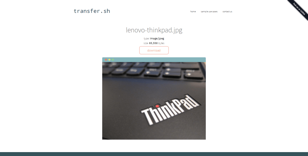 Thinkpadbild via Shell