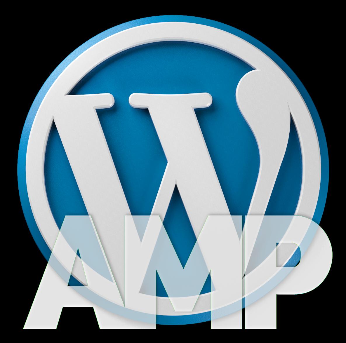 WordPress AMP Design Datenschutz und Metadaten