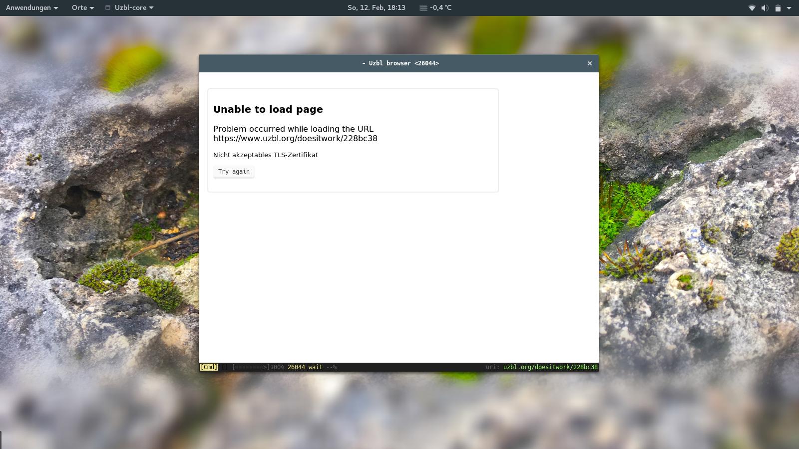uzbl Unacceptable TLS certificate when browsing