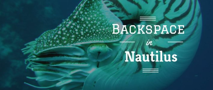 Backspace in Nautilus via Nautilus-python herstellen